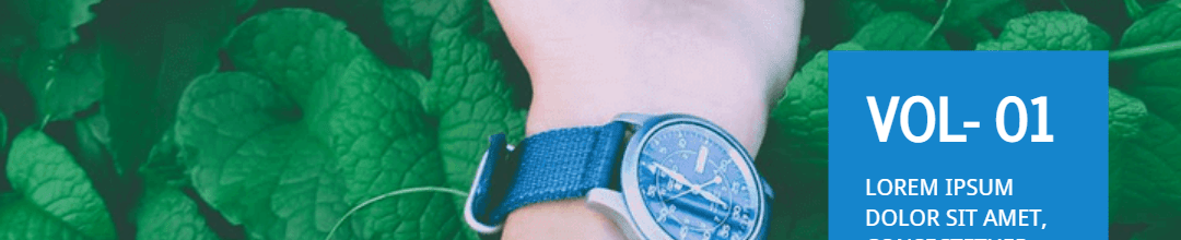 Watch Catalogs